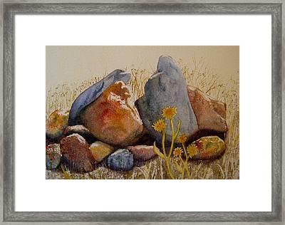 Rocks Framed Print by Teresa Boston