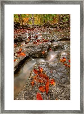 Rocky Creek Framed Print by Ryan Heffron