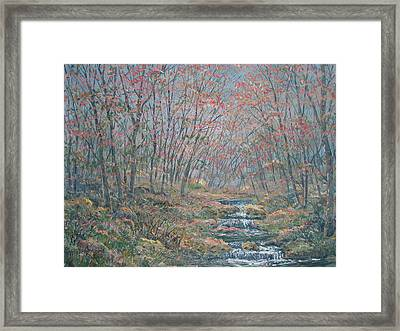 Rocky Forest. Framed Print