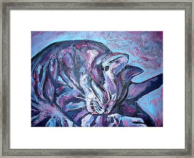 Rocky In Blue Framed Print by Sarah Crumpler