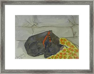 Rocky Framed Print by Janet Butler