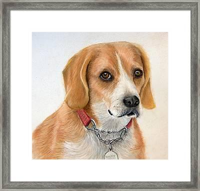 Rocky Framed Print by Mary Mayes