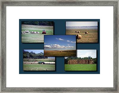 Rocky Mountain Hay Rolls Collage 02 Framed Print by Thomas Woolworth