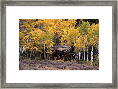 Rocky Mountain Homestead Framed Print by Cynthia  Cox Cottam