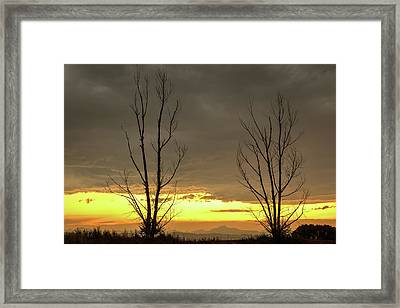 Framed Print featuring the photograph Rocky Mountains Horizon Through The Trees by James BO Insogna