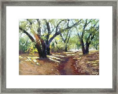Rocky Oak Park Framed Print