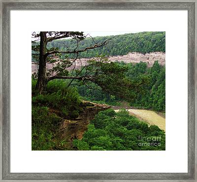 Rocky Overhang Framed Print by Deborah Johnson