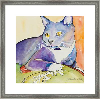 Rocky Framed Print by Pat Saunders-White