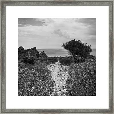 Rocky Path To The Sea In Mono - Square Framed Print by Georgia Fowler