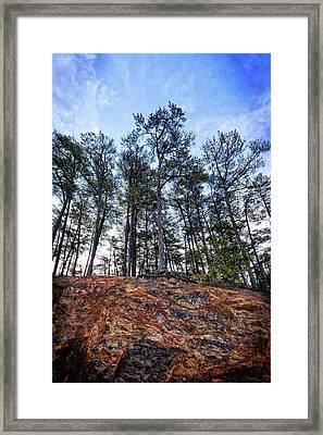 Framed Print featuring the photograph Rocky Pines by Alan Raasch