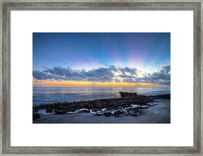 Framed Print featuring the photograph Rocky Reef At Low Tide by Debra and Dave Vanderlaan