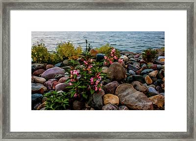 Rocky Shores Of Lake St. Clair- Michigan Framed Print