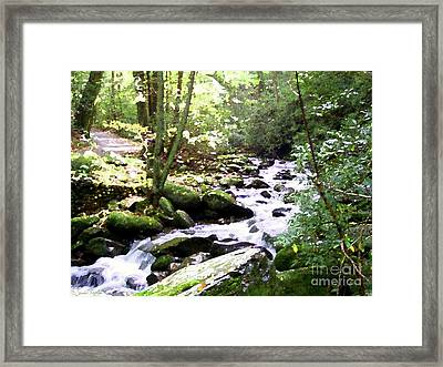 Rocky Stream 1 Framed Print