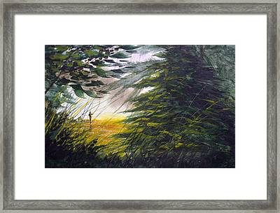 Rocky Stream Framed Print by Sean Seal