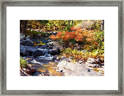 Rocky Stream Waterfalls Framed Print by Sherry  Curry