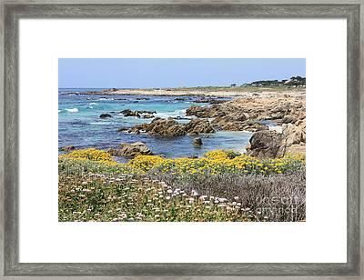 Rocky Surf With Wildflowers Framed Print by Carol Groenen