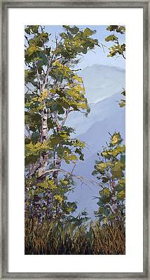 Rocky View Framed Print by Mary Giacomini