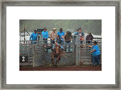 Framed Print featuring the photograph Rodeo Bronco by Lori Seaman
