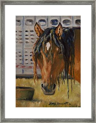 Rodeo Horse Framed Print by Lori Brackett