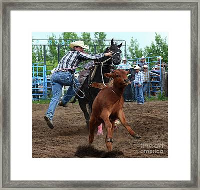 Rodeo Life 4 Framed Print by Bob Christopher