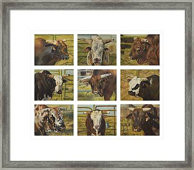Rodeo Royalty Framed Print