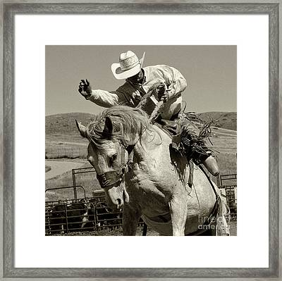 Rodeo Stars 19 Framed Print by Bob Christopher