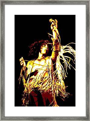 Roger Daltrey Framed Print by DB Artist