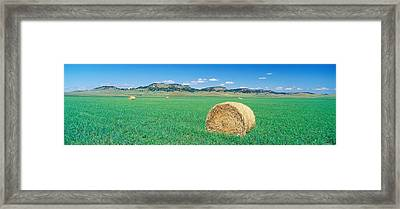 Rolled Hay Bale In Field With Hills Framed Print by Panoramic Images