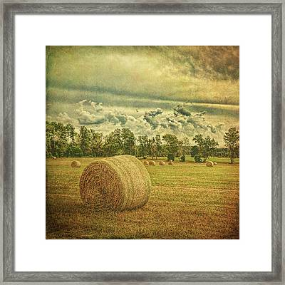 Framed Print featuring the photograph Rollin' Hay by Lewis Mann