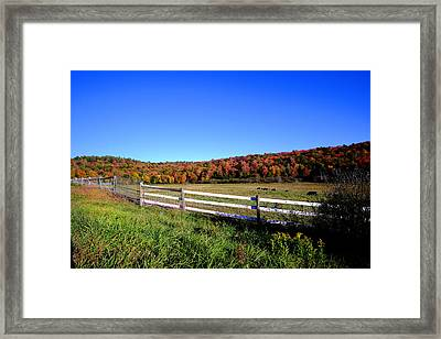 Rolling Color Framed Print