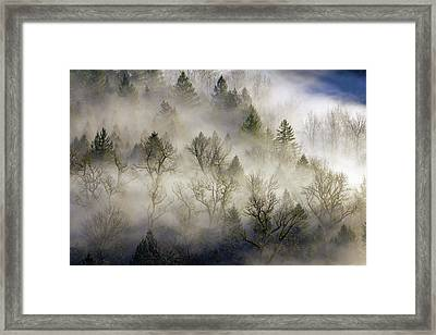 Rolling Fog In Sandy River Valley Framed Print by David Gn