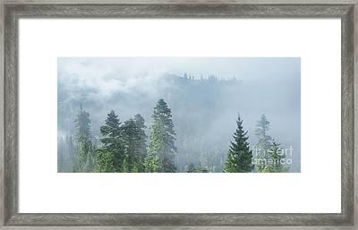 Rolling Fog Framed Print by Svetlana Sewell