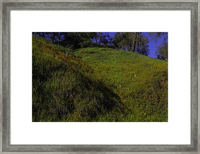 Rolling Hills With Poppies Framed Print by Garry Gay
