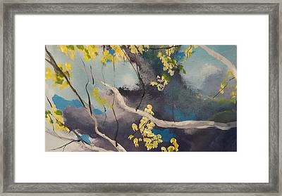 Rolling In Framed Print by Michael Dillon