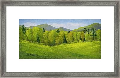 Rolling Spring Pastures  Framed Print by Frank Wilson