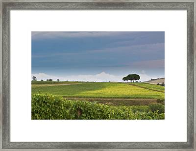 Rolling Tuscany 2 Framed Print by Patrick English