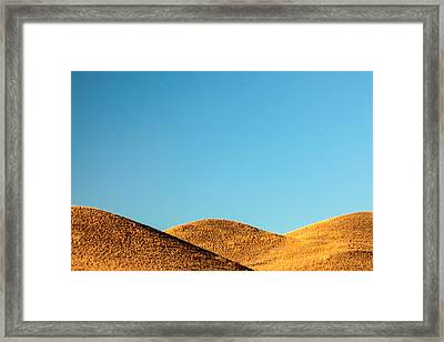 Roly Poly Framed Print by Todd Klassy