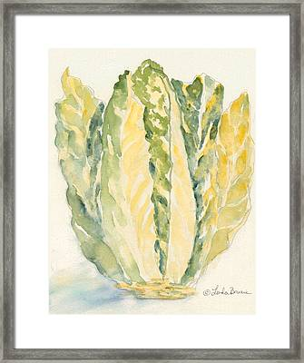 Romaine Framed Print by Linda Bourie