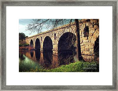 Roman Bridge Framed Print