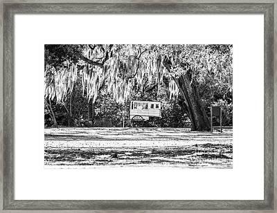 Roman Candy Cart Under The Oaks - Bw Framed Print