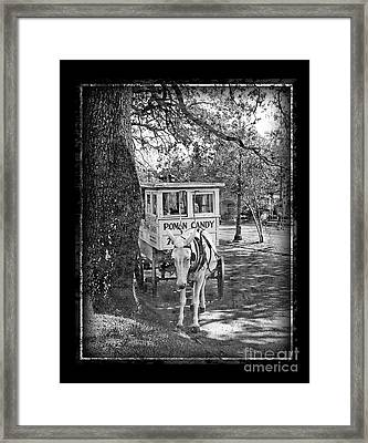 Roman Candy Framed Print by Jeanne  Woods