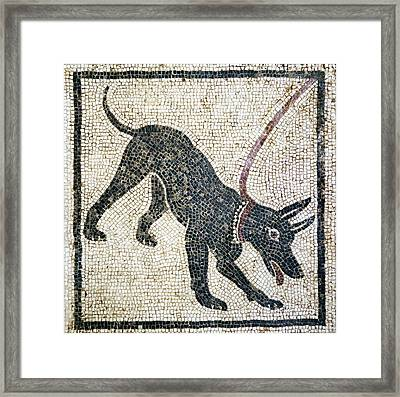 Roman Guard Dog Mosaic Framed Print by Sheila Terry