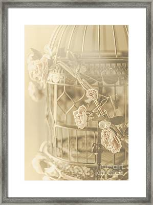 Romance In A Captive Entanglement Framed Print by Jorgo Photography - Wall Art Gallery