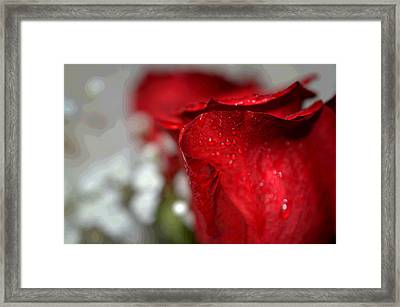 Romance In Red Framed Print