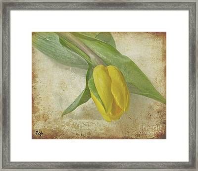 Framed Print featuring the photograph Romance by Traci Cottingham
