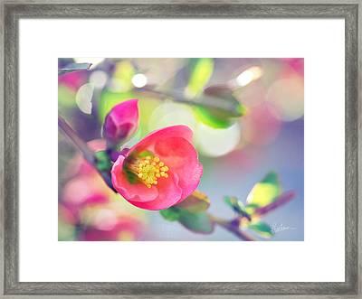 Romancing Spring I Framed Print