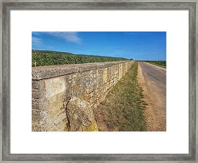Romanee Conti Vineyard  Framed Print by Nadia Seme