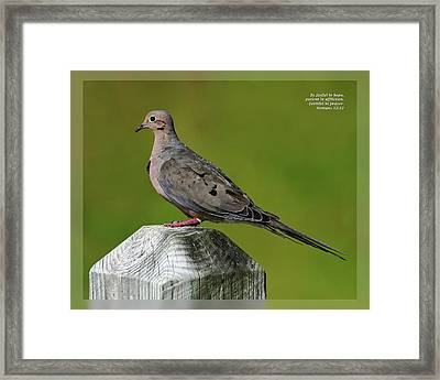 Framed Print featuring the photograph Romans 12 12 by Dawn Currie