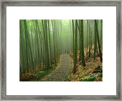 Romantic Bamboo Forest Framed Print