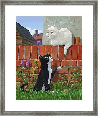 Romantic Cute Cats In Garden Framed Print by Martin Davey